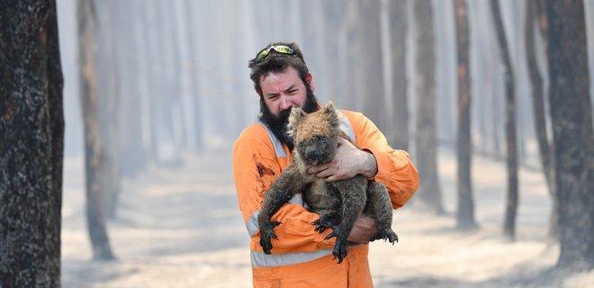 Пожары в Австралии усилились: готовится эвакуация