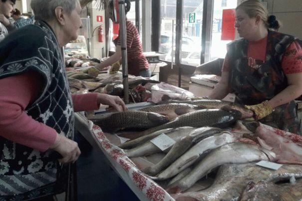 Покупая рыбу, первым делом посмотрите ей в глаза: правила выбора