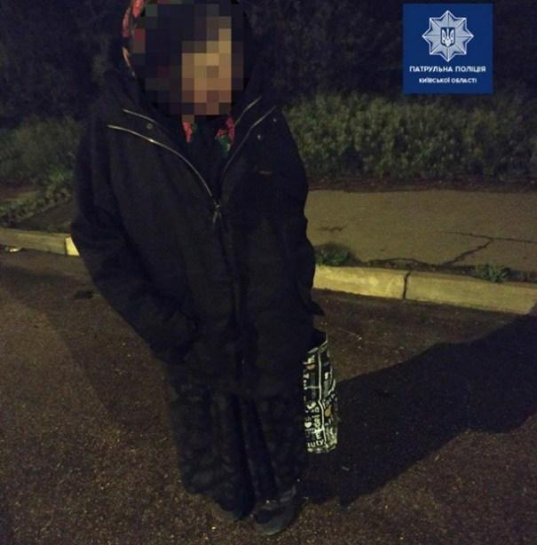 Пенсионерка пошла пешком из Полтавы в Киев