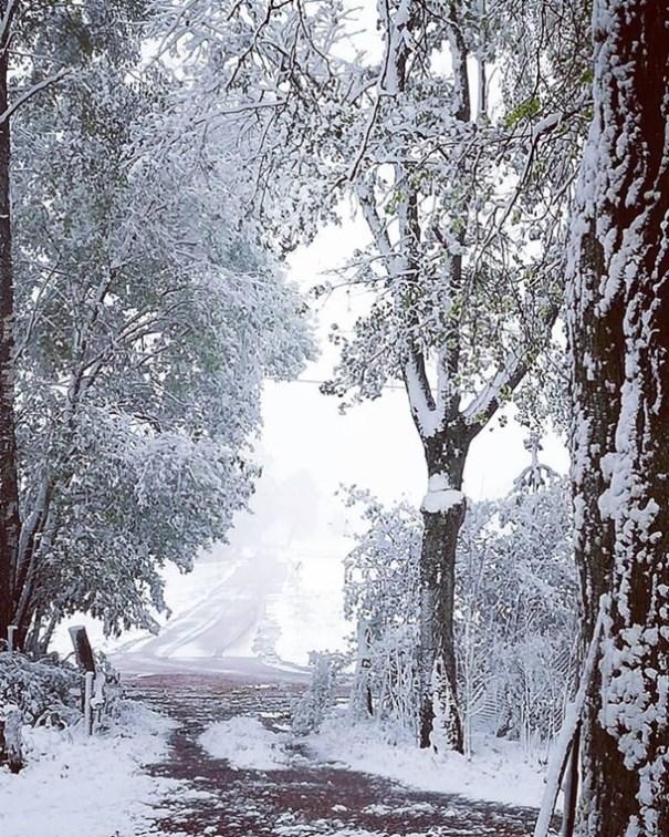 Восточную Европу засыпало снегом: фото