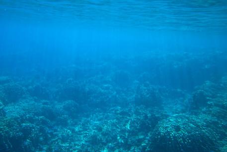 В Египте на закрытом пляже утонули 11 человек