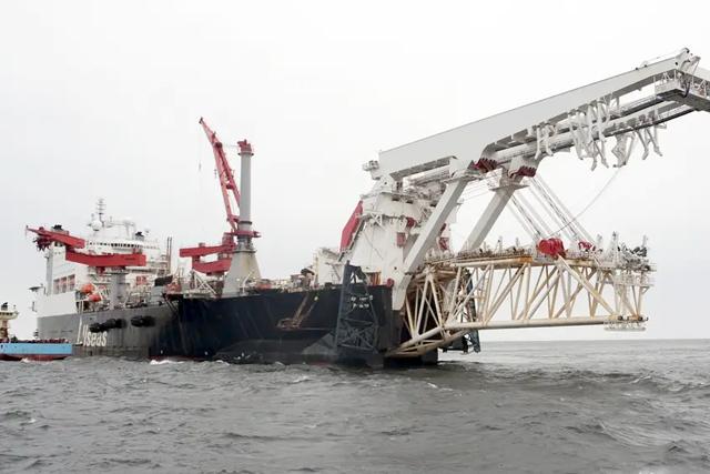 Дания объявила нерест трески и остановила «Северный поток-2»