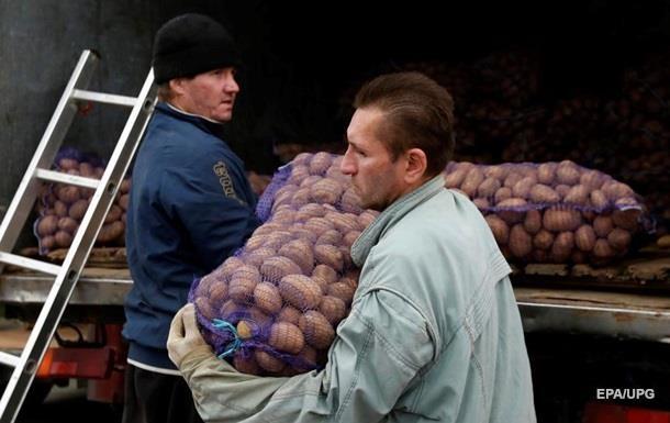 Украина вошла в Топ-3 мировых производителей картофеля