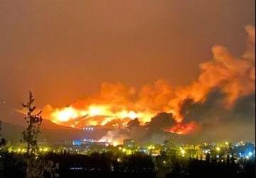 В Сирии и Турции вспыхнули масштабные лесные пожары