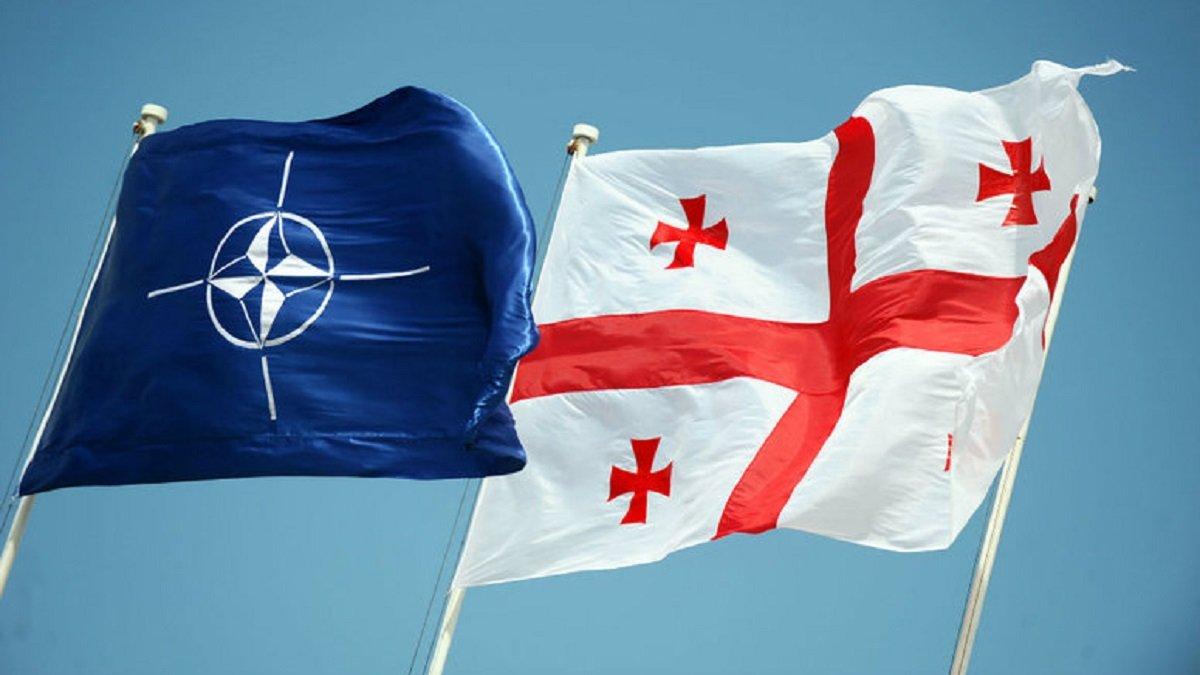 НАТО готовит для Грузии План действий для членства