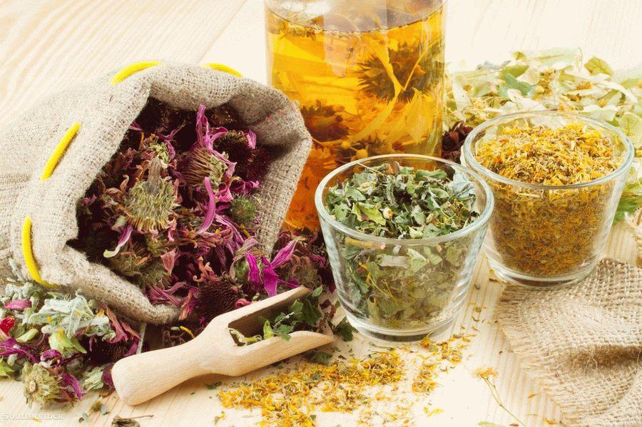 Какие настои из лекарственных трав полезны для сердца