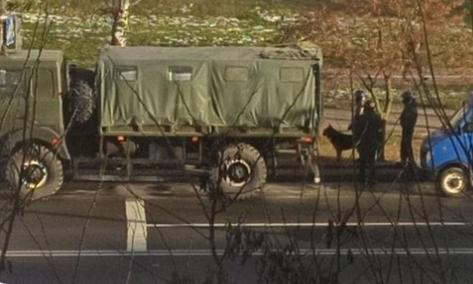 В Минске начались разгоны протестующих, силовики работают с собаками