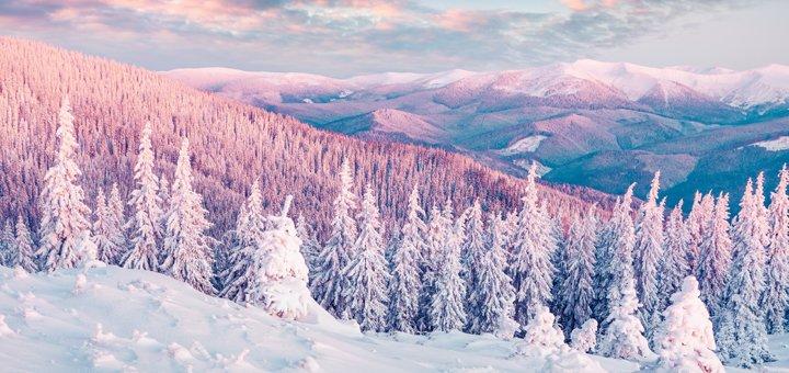 Зимний отдых в Косово: предложения на любой вкус и бюджет