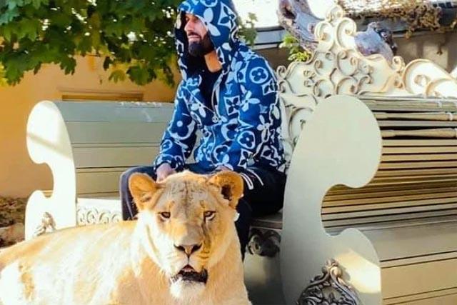 Депутат горсовета Харькова задекларировал льва, фото
