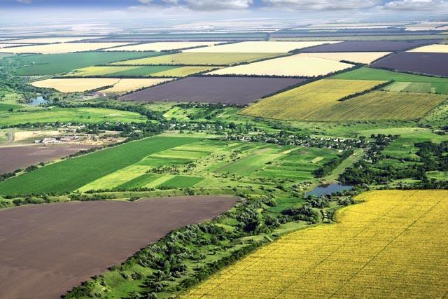 Продать землю и защититься от мошенников: в Украине заработал бесплатный Viber-бот LandInvest для проверки паевых участков в госреестрах